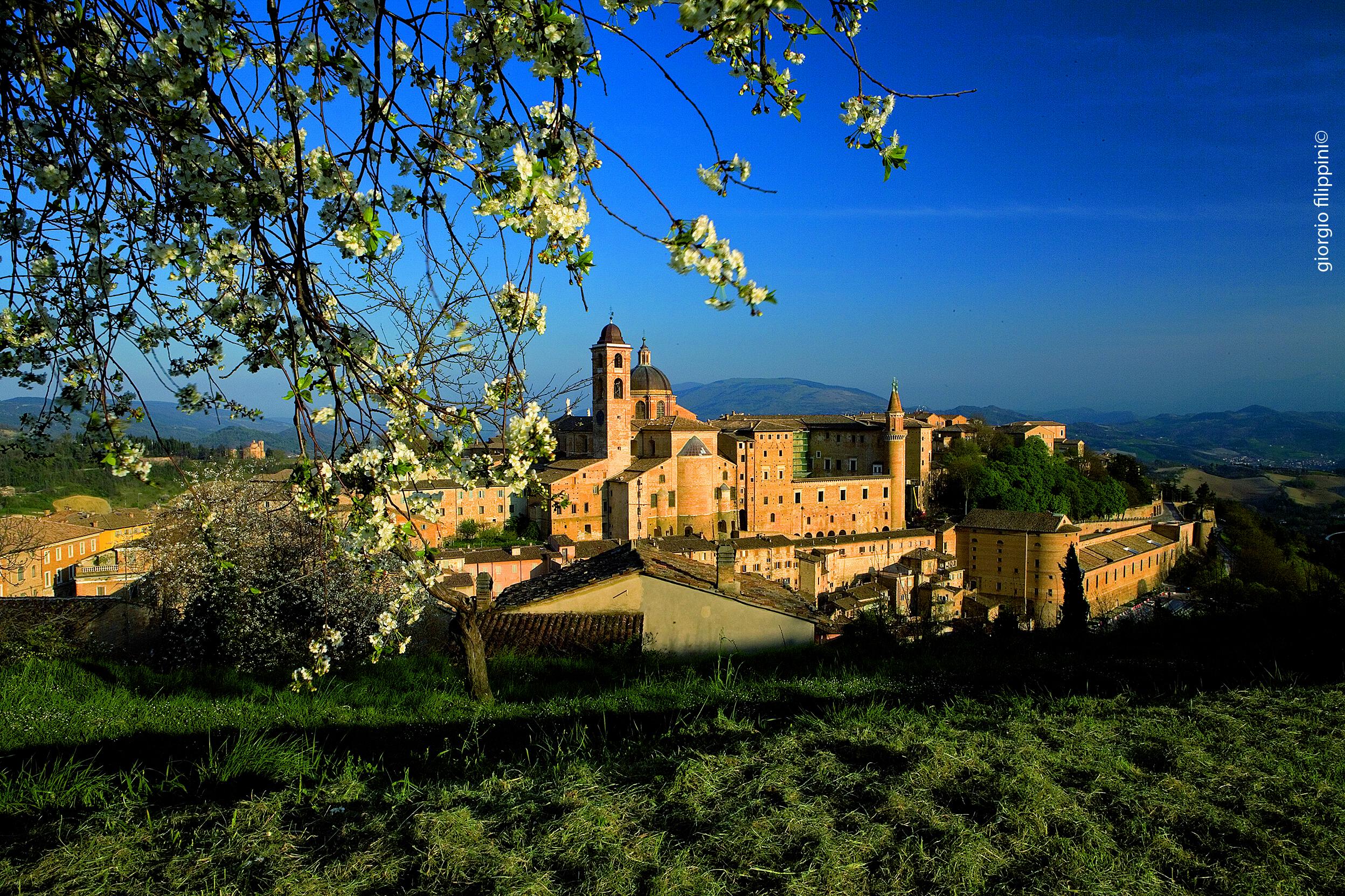 06_Urbino CMYK