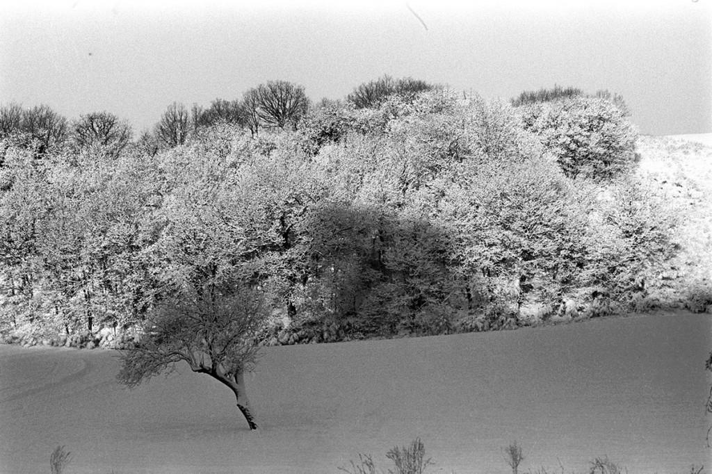 MDolcini_Paesaggio-invernale-b