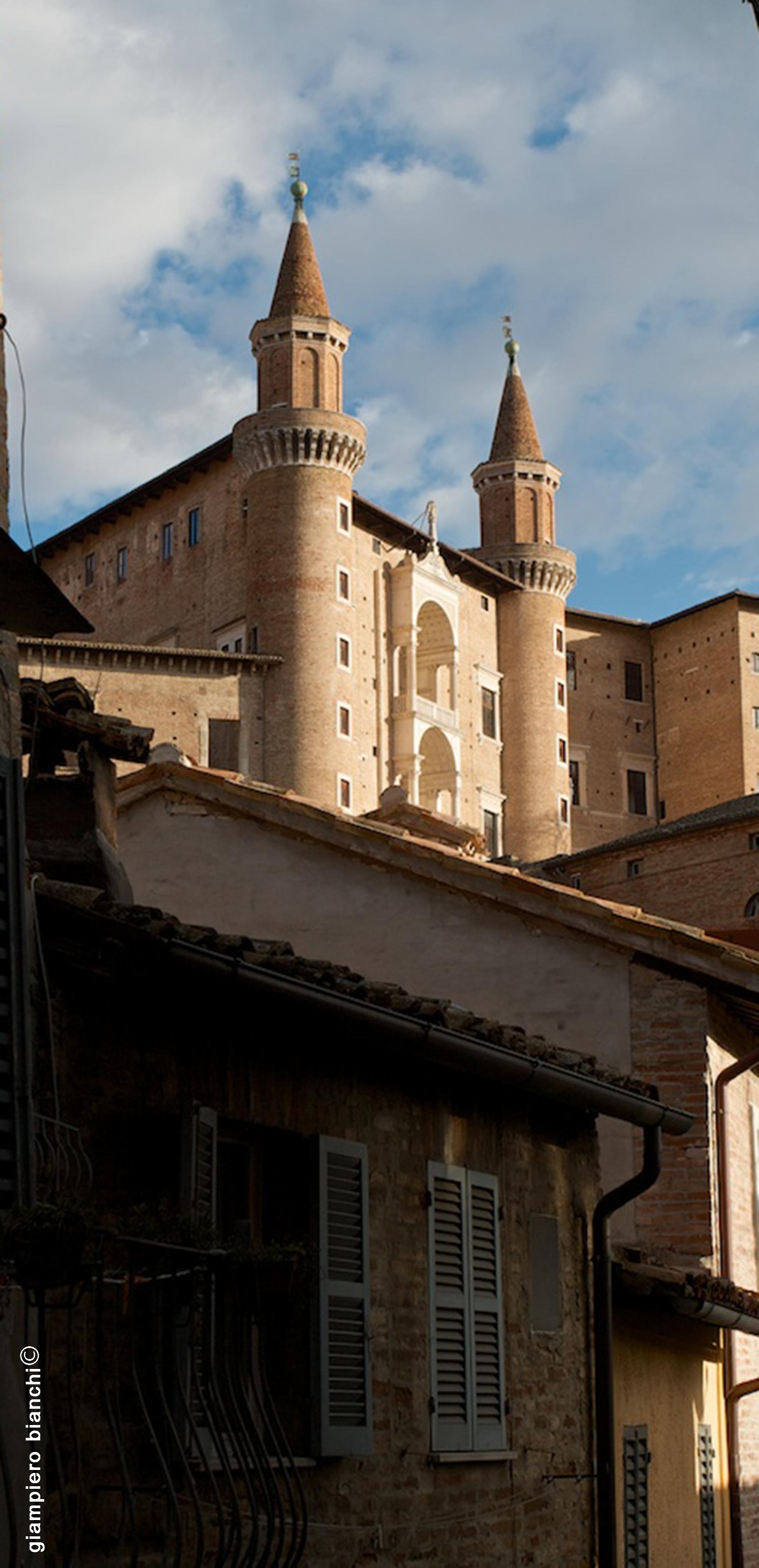 Urbino (7)