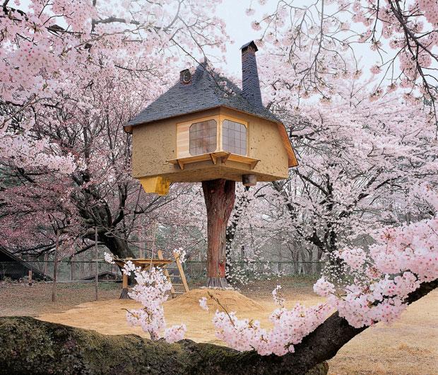 case-sugli-alberi-00b